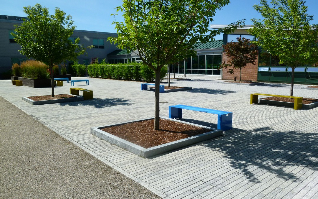 Marshall-Simonds-Middle-School_academics_1_plaza