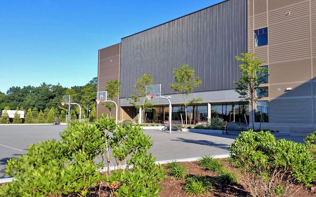 4Sherwood-school-basketball-plants